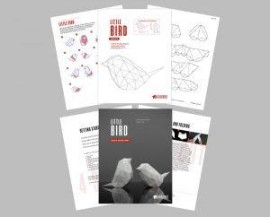 Bird PDF Template Image